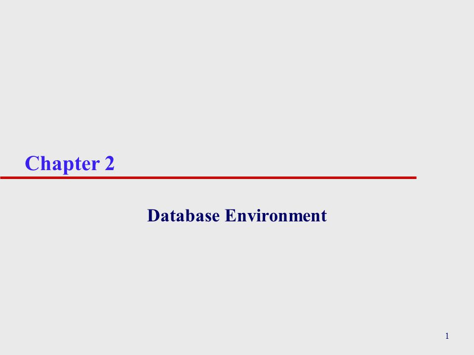 1 Chapter 2 Database Environment