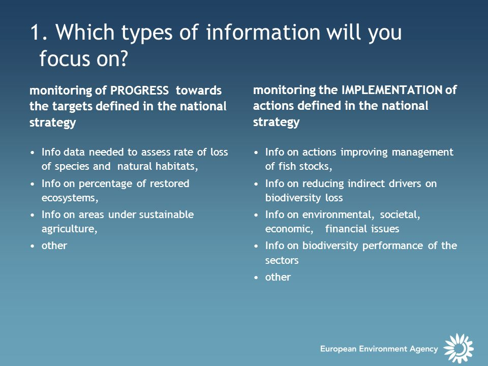 1. Which types of information will you focus on.