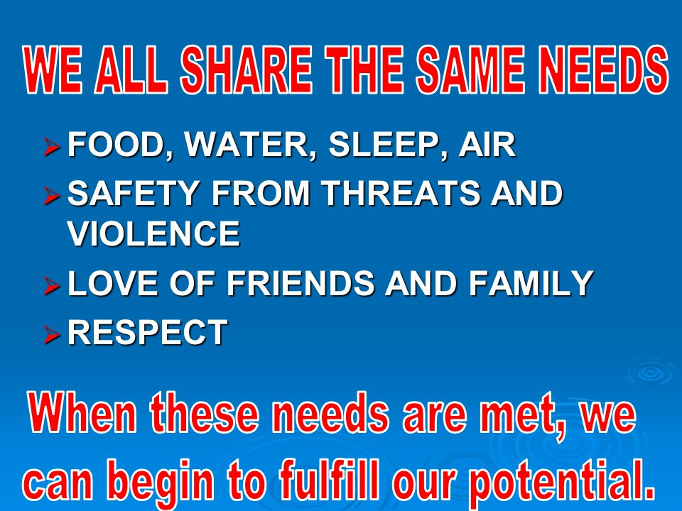  FOOD, WATER, SLEEP, AIR  SAFETY FROM THREATS AND VIOLENCE  LOVE OF FRIENDS AND FAMILY  RESPECT