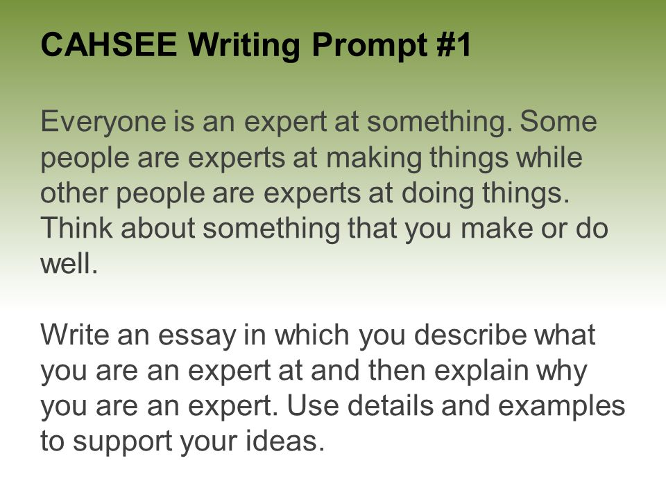 Cahsee writing prompt 1 everyone is an expert at something some