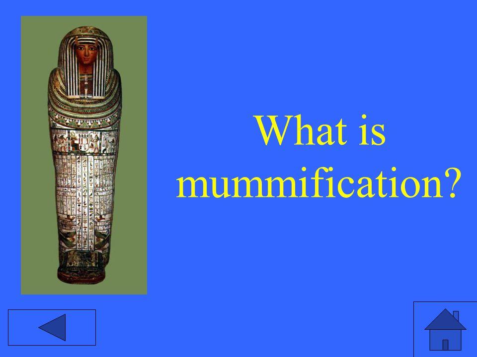 What is mummification