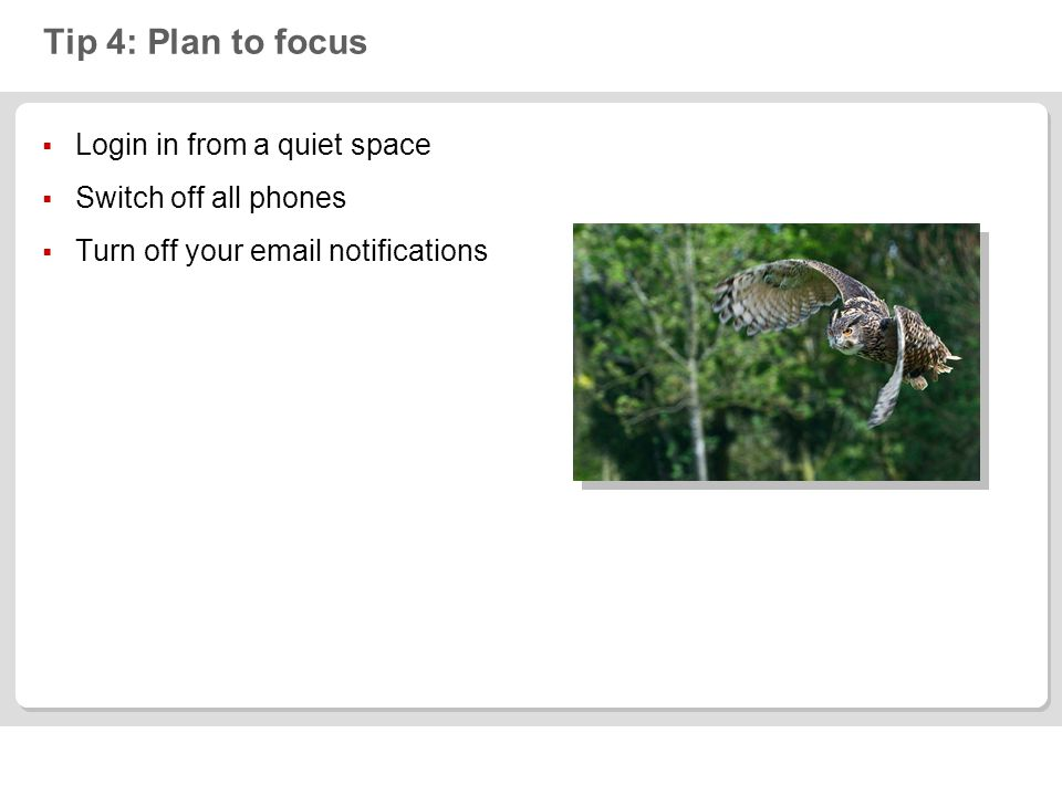 Tip 4: Plan to focus  Login in from a quiet space  Switch off all phones  Turn off your  notifications