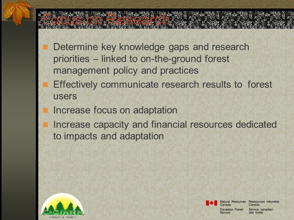 Focus on Research Determine key knowledge gaps and research priorities – linked to on-the-ground forest management policy and practices Effectively communicate research results to forest users Increase focus on adaptation Increase capacity and financial resources dedicated to impacts and adaptation