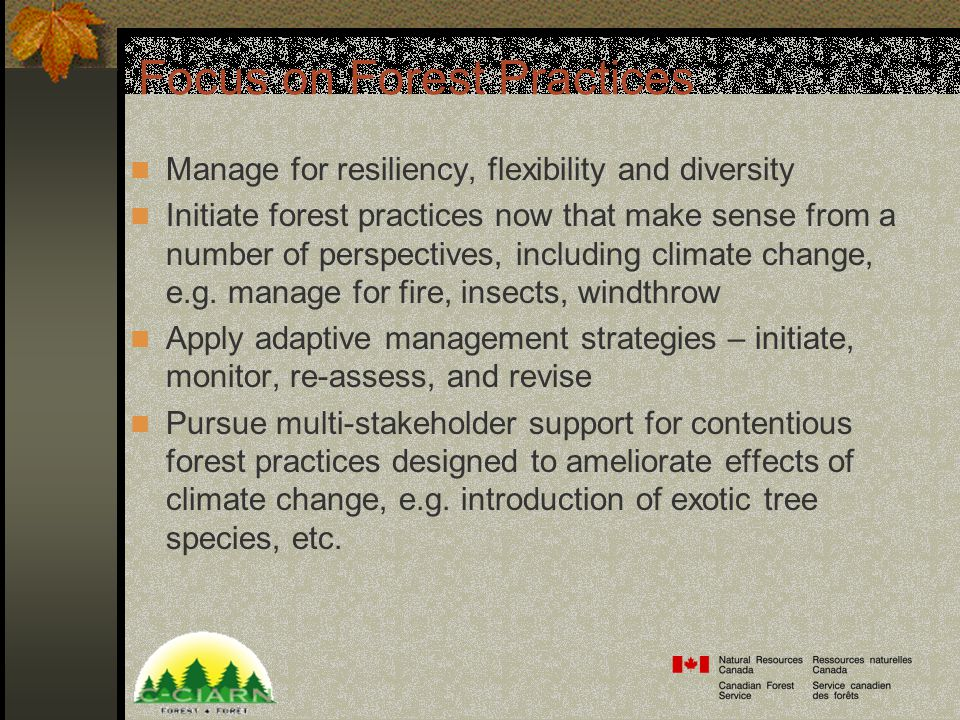 Focus on Forest Practices Manage for resiliency, flexibility and diversity Initiate forest practices now that make sense from a number of perspectives, including climate change, e.g.