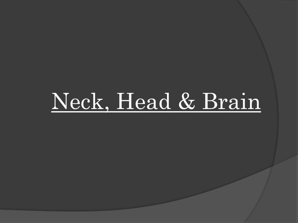 Neck, Head & Brain