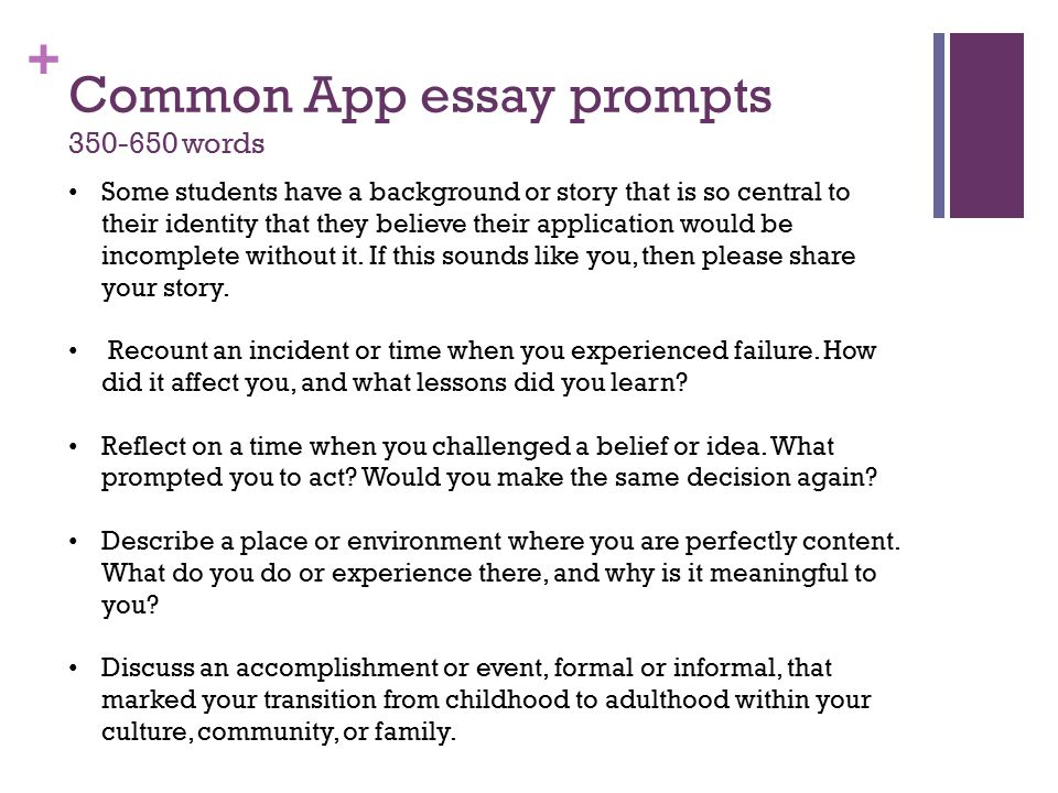 nyu undergraduate essay prompts Nyc application essay prompt lucky for you, nyu has only one essay don't celebrate too early though while this may seem like less work for you, it also leaves less room for nyu is famous for its study-abroad program over 3,000 undergraduates take advantage of this opportunity every year.