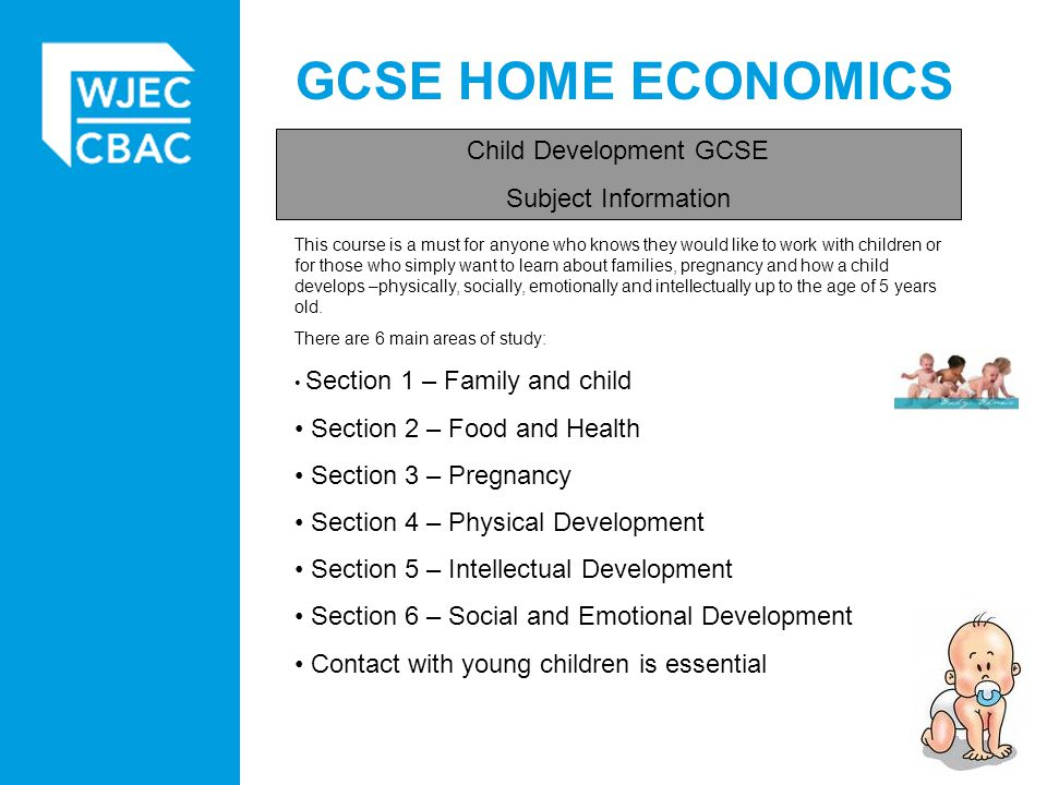 gcse child development coursework child study Ocr gcse home economics: child development qualification information including specification, exam materials, teaching resources, learning resources.