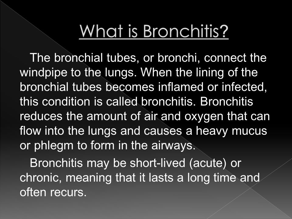 The bronchial tubes, or bronchi, connect the windpipe to the lungs.