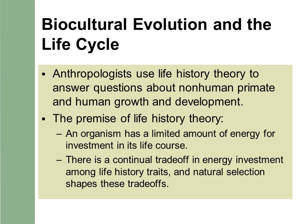 biocultural evolution Dual inheritance theory ( dit ), also known as gene–culture coevolution or biocultural evolution , was developed in the 1960s through early 1980s to explain how human behavior is a product of two different and interacting evolutionary processes: genetic evolution and cultural evolution.
