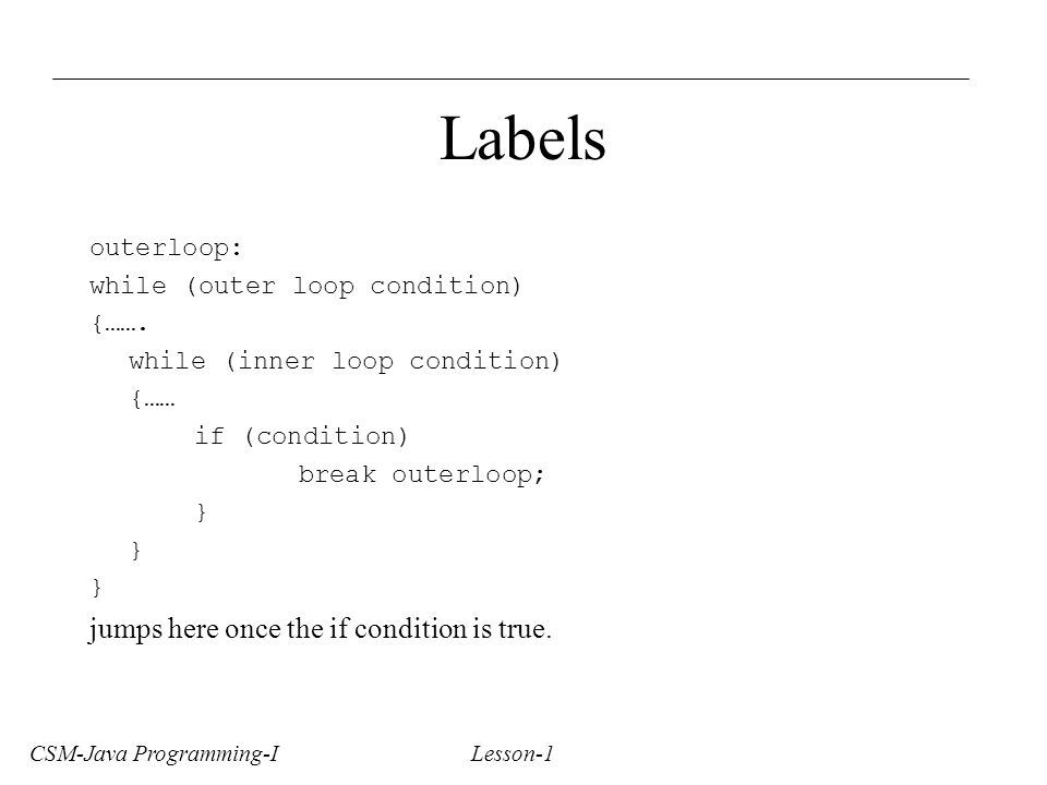 CSM-Java Programming-I Lesson-1 Labels outerloop: while (outer loop condition) {…….