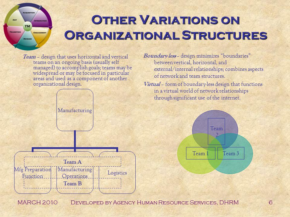 MARCH 2010Developed by Agency Human Resource Services, DHRM6 Other Variations on Organizational Structures Team – design that uses horizontal and vertical teams on an ongoing basis (usually self managed) to accomplish goals; teams may be widespread or may be focused in particular areas and used as a component of another organizational design.