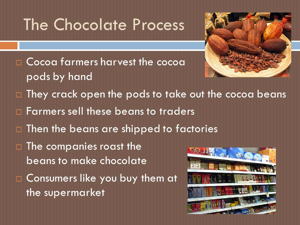 The Chocolate Process  Cocoa farmers harvest the cocoa pods by hand  They crack open the pods to take out the cocoa beans  Farmers sell these beans to traders  Then the beans are shipped to factories  The companies roast the beans to make chocolate  Consumers like you buy them at the supermarket