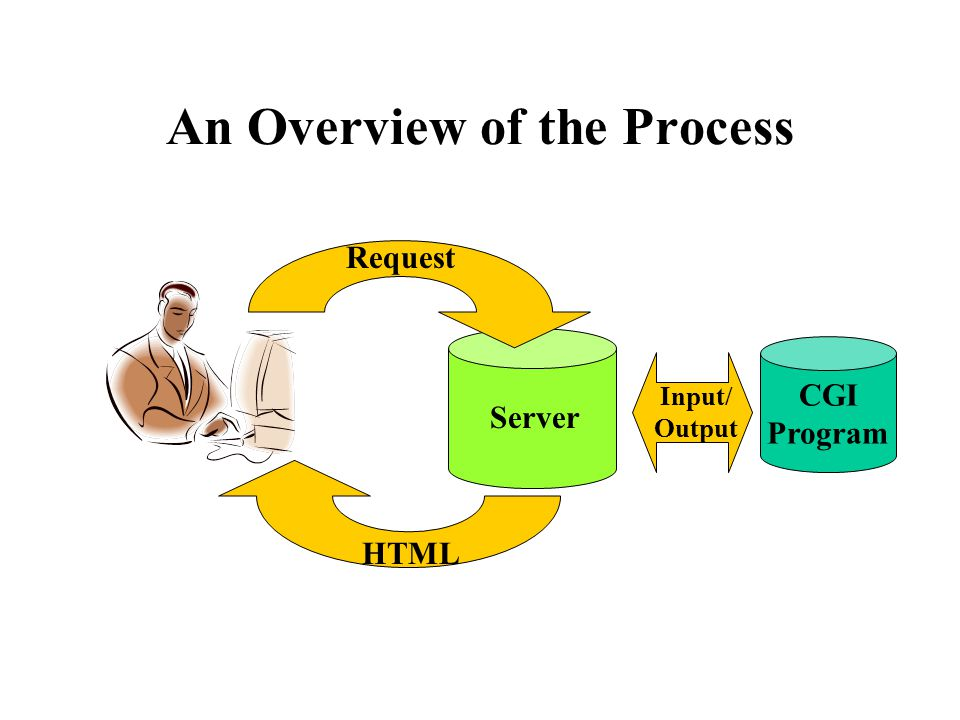An Overview of the Process Server CGI Program Input/ Output Request HTML