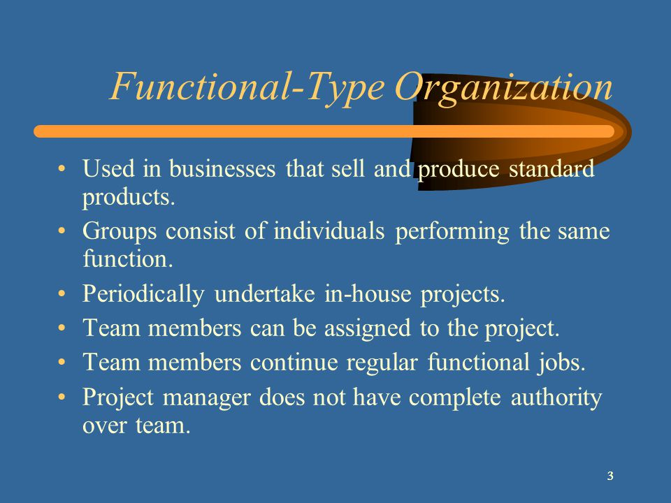 333 Functional-Type Organization Used in businesses that sell and produce standard products.