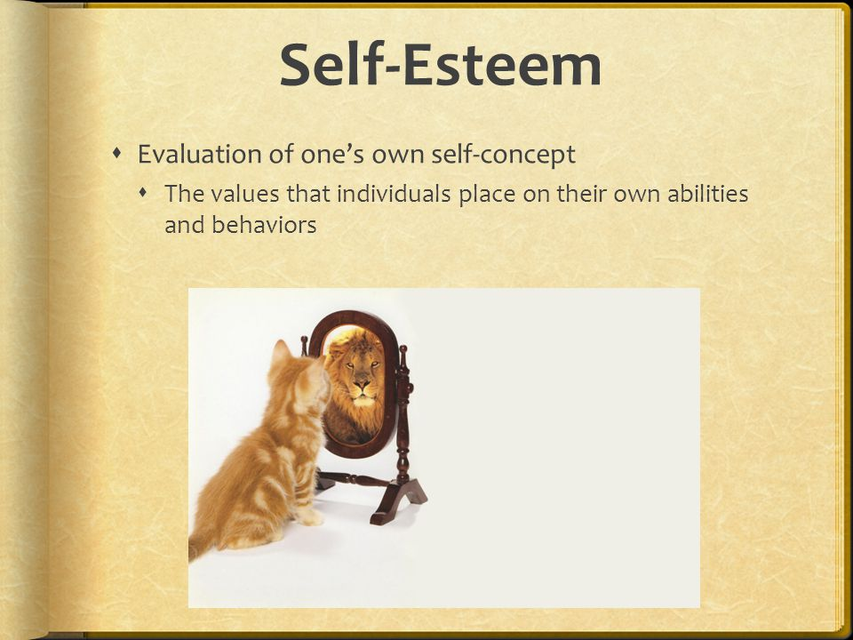 Self-Esteem  Evaluation of one's own self-concept  The values that individuals place on their own abilities and behaviors