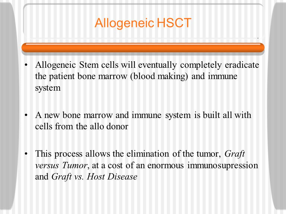 Allogeneic HSCT Allogeneic Stem cells will eventually completely eradicate the patient bone marrow (blood making) and immune system A new bone marrow and immune system is built all with cells from the allo donor This process allows the elimination of the tumor, Graft versus Tumor, at a cost of an enormous immunosupression and Graft vs.