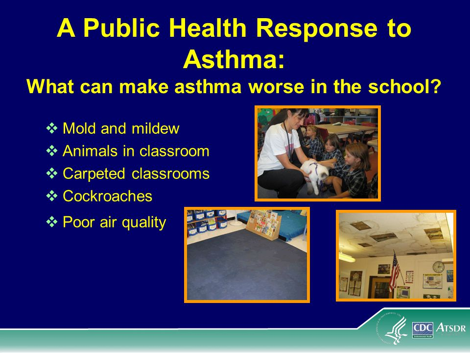 A Public Health Response to Asthma: What can make asthma worse in the school.