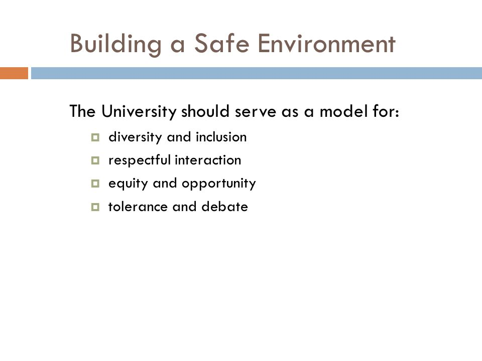 Building a Safe Environment The University should serve as a model for:  diversity and inclusion  respectful interaction  equity and opportunity  tolerance and debate