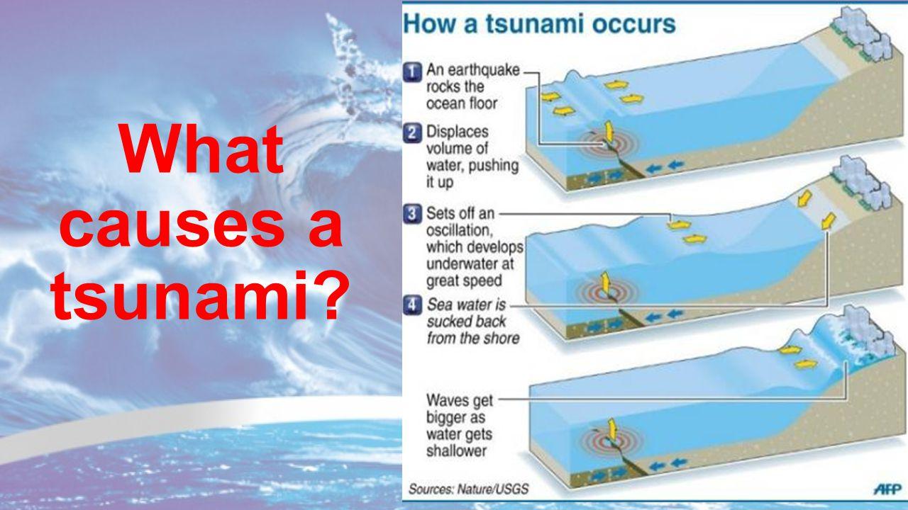 Tsunami. - ppt download