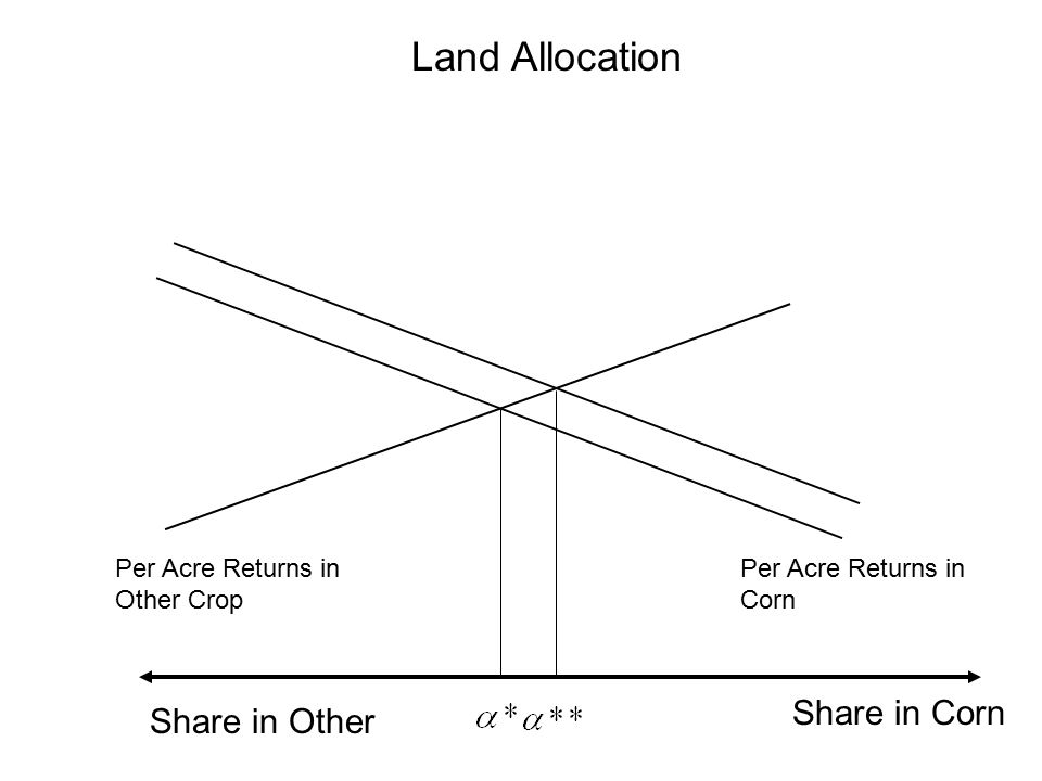 Land Allocation Share in Corn Per Acre Returns in Other Crop Share in Other Per Acre Returns in Corn