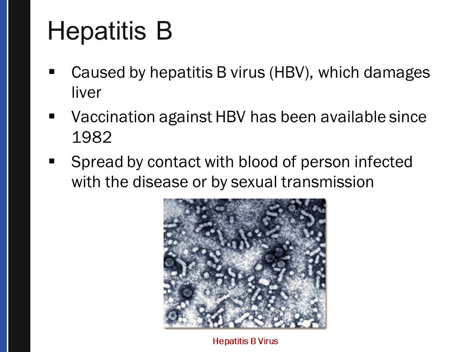 Hepatitis B  Caused by hepatitis B virus (HBV), which damages liver  Vaccination against HBV has been available since 1982  Spread by contact with blood of person infected with the disease or by sexual transmission Hepatitis B Virus