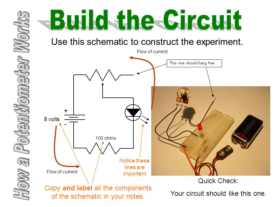 Use this schematic to construct the experiment.