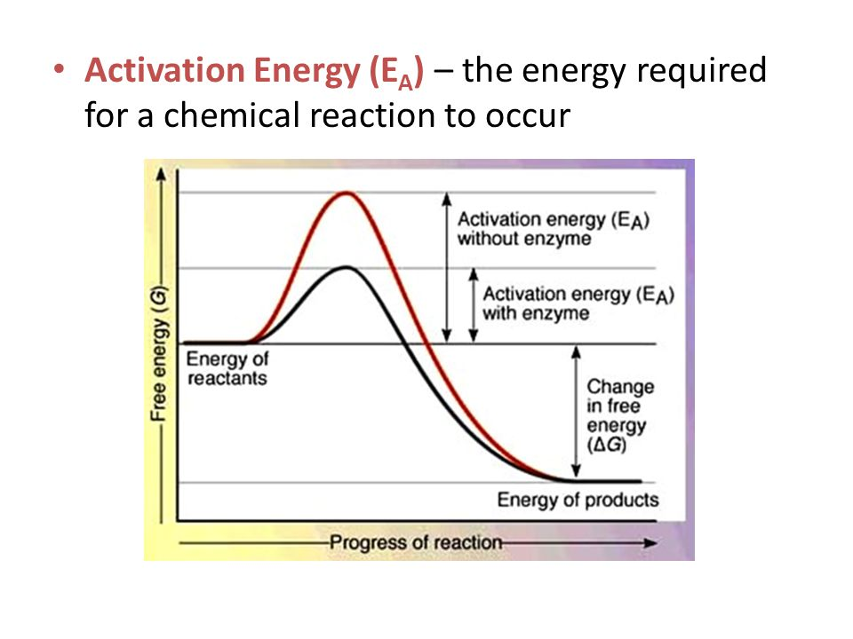 Activation Energy (E A ) – the energy required for a chemical reaction to occur