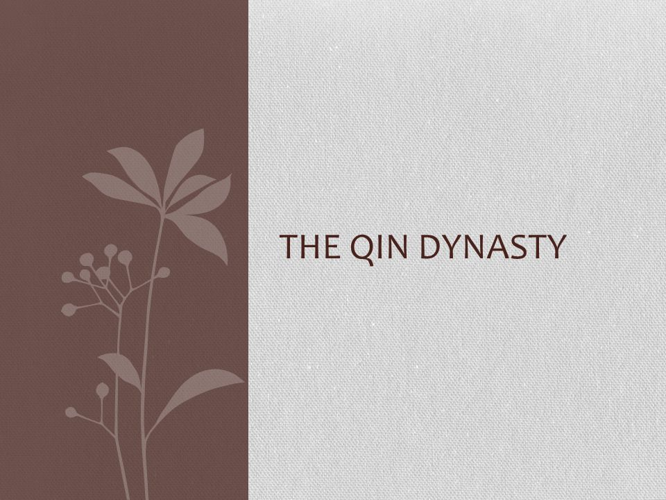 THE QIN DYNASTY