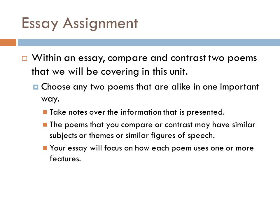 poem not my business essay
