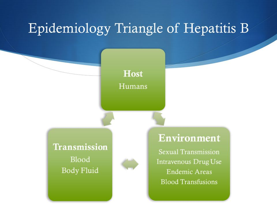 Epidemiology Triangle of Hepatitis B Host Humans Environment Sexual Transmission Intravenous Drug Use Endemic Areas Blood Transfusions Transmission Blood Body Fluid