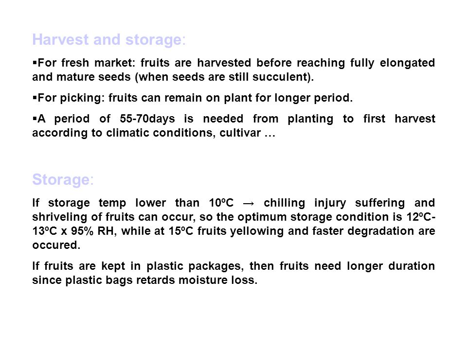 Harvest and storage:  For fresh market: fruits are harvested before reaching fully elongated and mature seeds (when seeds are still succulent).