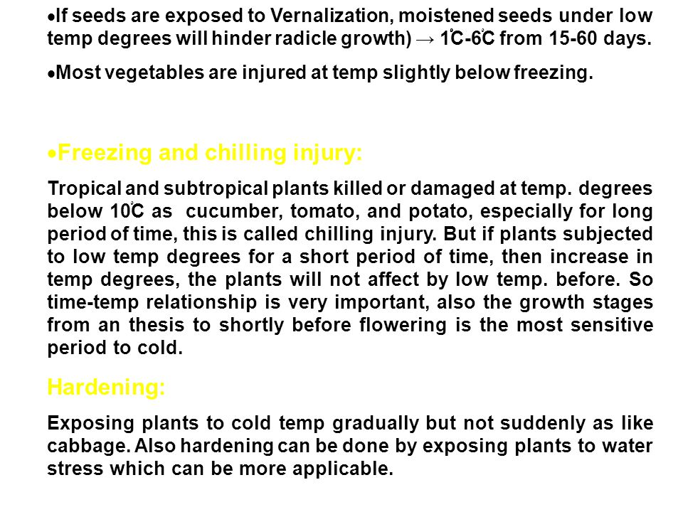  If seeds are exposed to Vernalization, moistened seeds under low temp degrees will hinder radicle growth) → 1 ْْْ C-6 ْ C from 15-60 days.