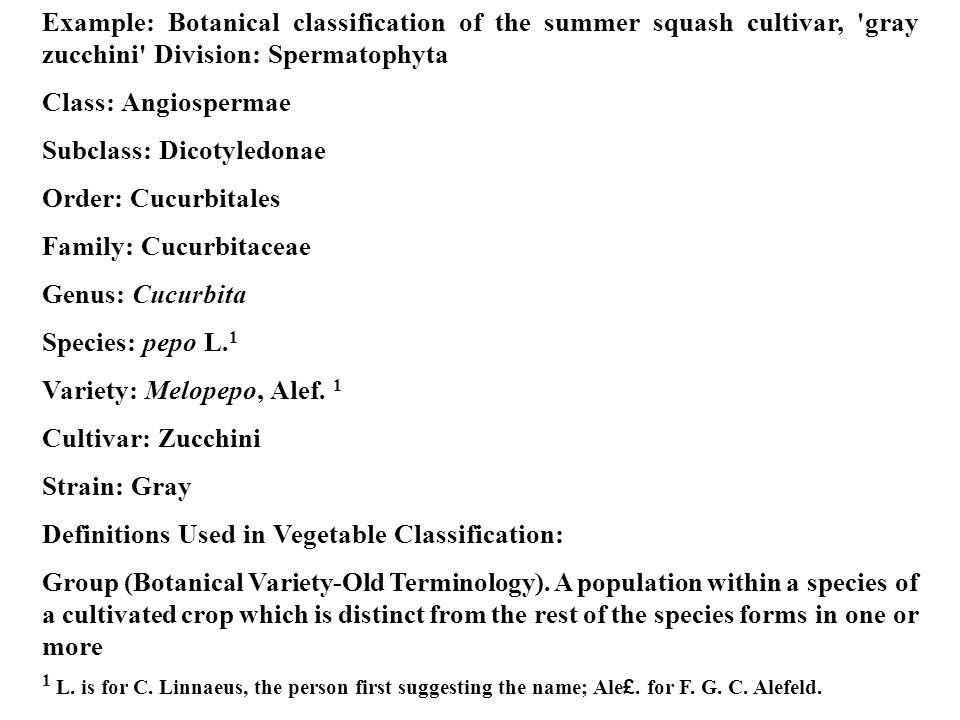 Example: Botanical classification of the summer squash cultivar, gray zucchini Division: Spermatophyta Class: Angiospermae Subclass: Dicotyledonae Order: Cucurbitales Family: Cucurbitaceae Genus: Cucurbita Species: pepo L.