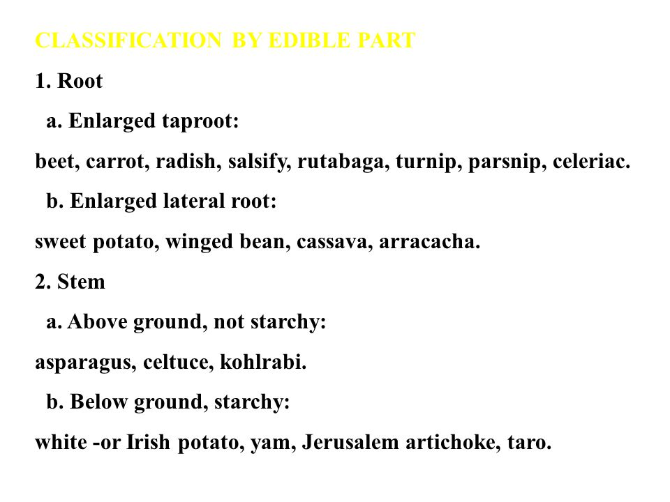 CLASSIFICATION BY EDIBLE PART 1.Root a.