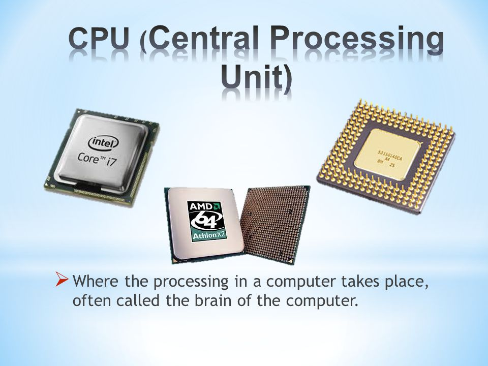  Where the processing in a computer takes place, often called the brain of the computer.