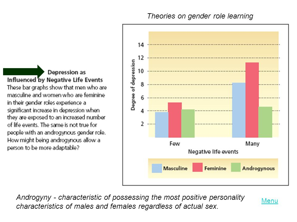 Theories on gender role learning Androgyny - characteristic of possessing the most positive personality characteristics of males and females regardles