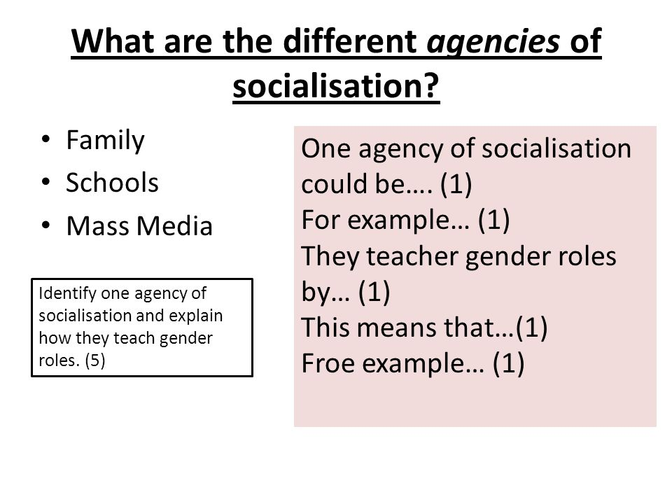 What are the different agencies of socialisation.
