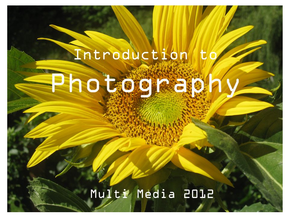 Introduction to Photography Multi Media 2012