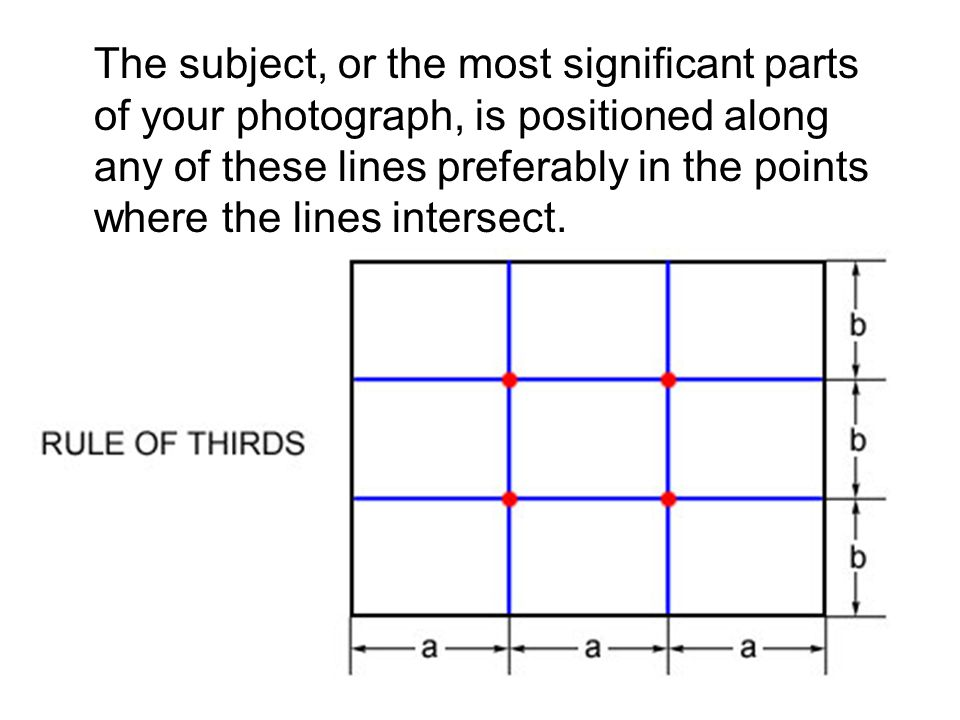 The subject, or the most significant parts of your photograph, is positioned along any of these lines preferably in the points where the lines intersect.