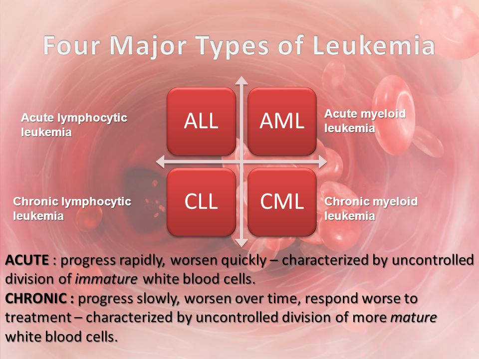 ALLAMLCLLCML Acute lymphocytic leukemia Acute myeloid leukemia Chronic lymphocytic leukemia Chronic myeloid leukemia ACUTE : progress rapidly, worsen quickly – characterized by uncontrolled division of immature white blood cells.