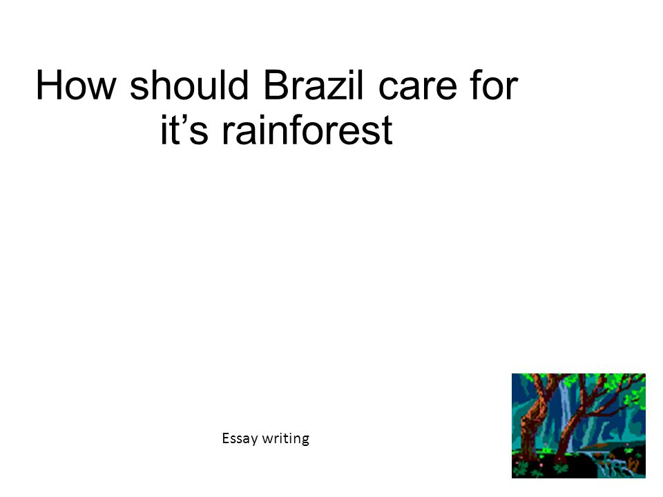 how should care for it s rainforest essay writing ppt 1 how should care for it s rainforest essay writing