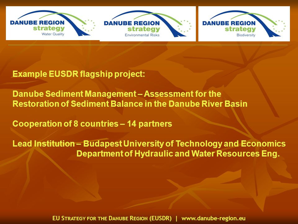 EU S TRATEGY FOR THE D ANUBE R EGION (EUSDR) |   Example EUSDR flagship project: Danube Sediment Management – Assessment for the Restoration of Sediment Balance in the Danube River Basin Cooperation of 8 countries – 14 partners Lead Institution – Budapest University of Technology and Economics Department of Hydraulic and Water Resources Eng.