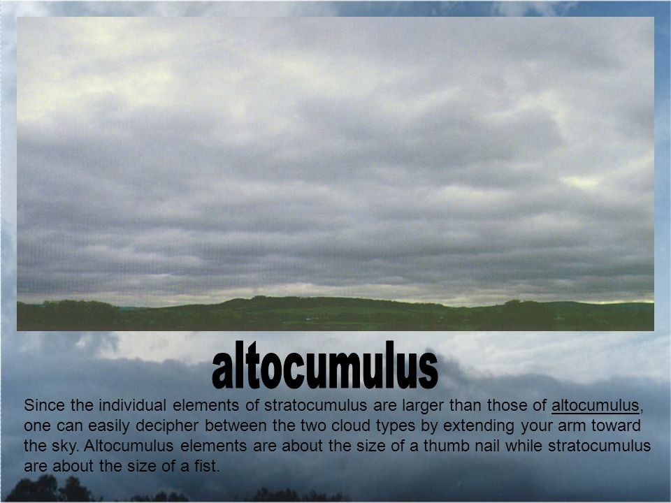 Since the individual elements of stratocumulus are larger than those of altocumulus, one can easily decipher between the two cloud types by extending your arm toward the sky.