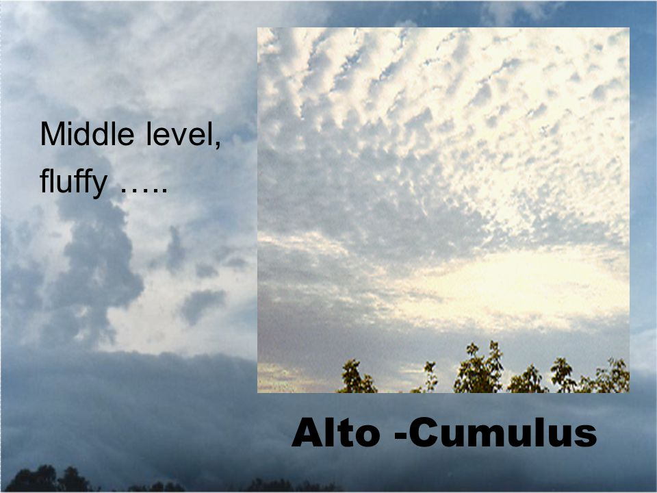 Middle level, fluffy ….. Alto -Cumulus