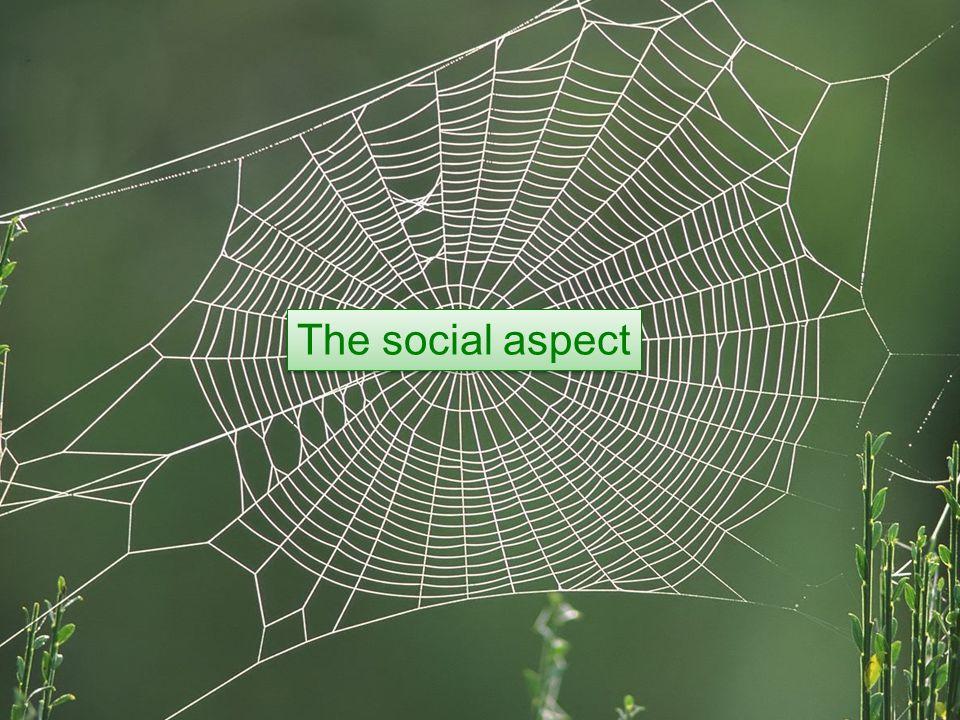 The social aspect