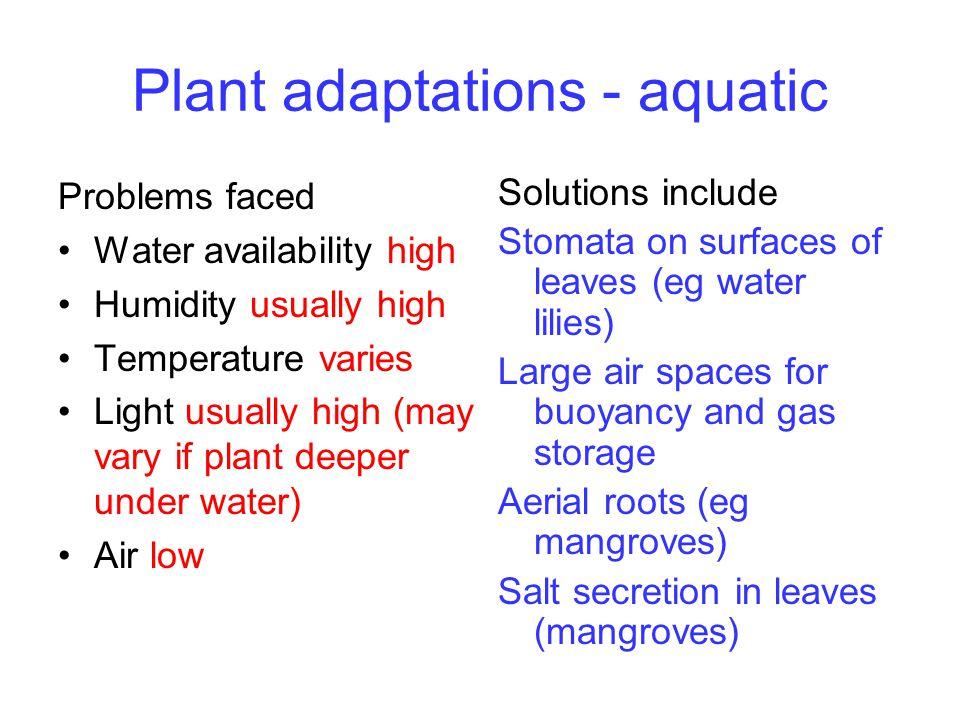 Biology 12. Arid regions Usually hot and dry eg Australian ...