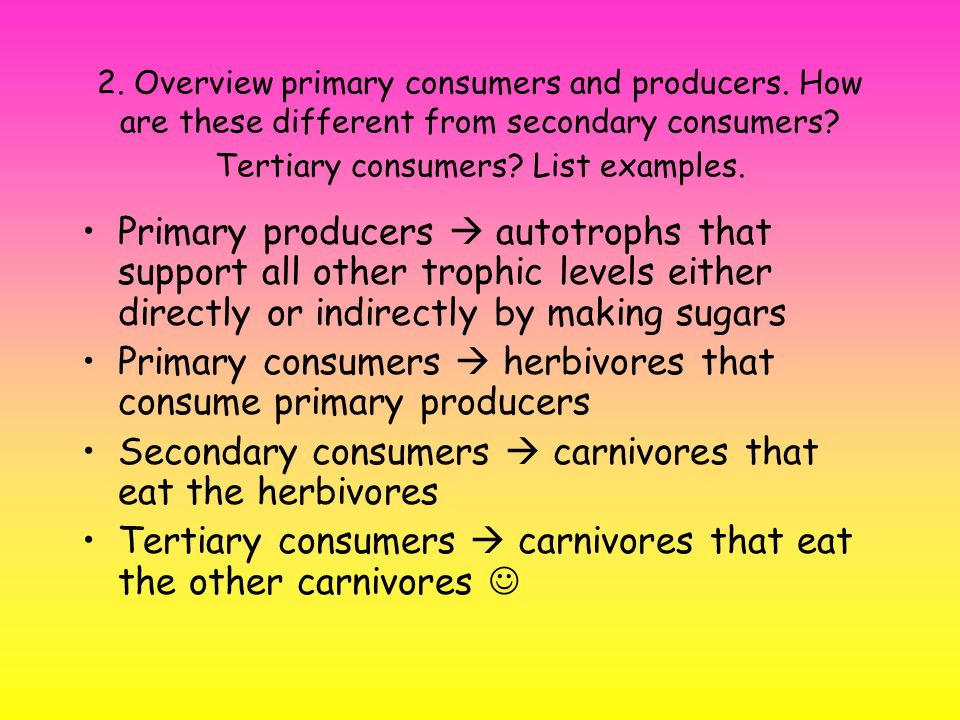 2. Overview primary consumers and producers. How are these different from secondary consumers.