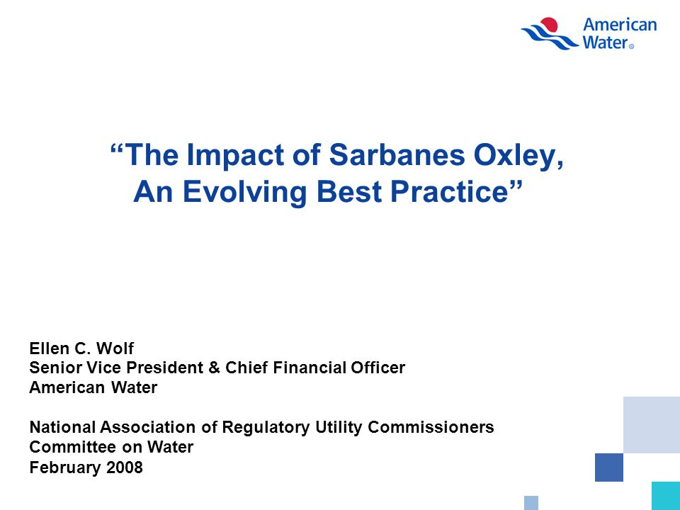 The Impact of Sarbanes Oxley, An Evolving Best Practice Ellen C.