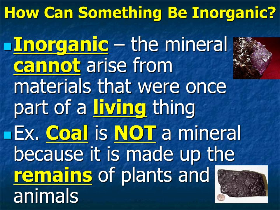 How Can Something Be Inorganic.