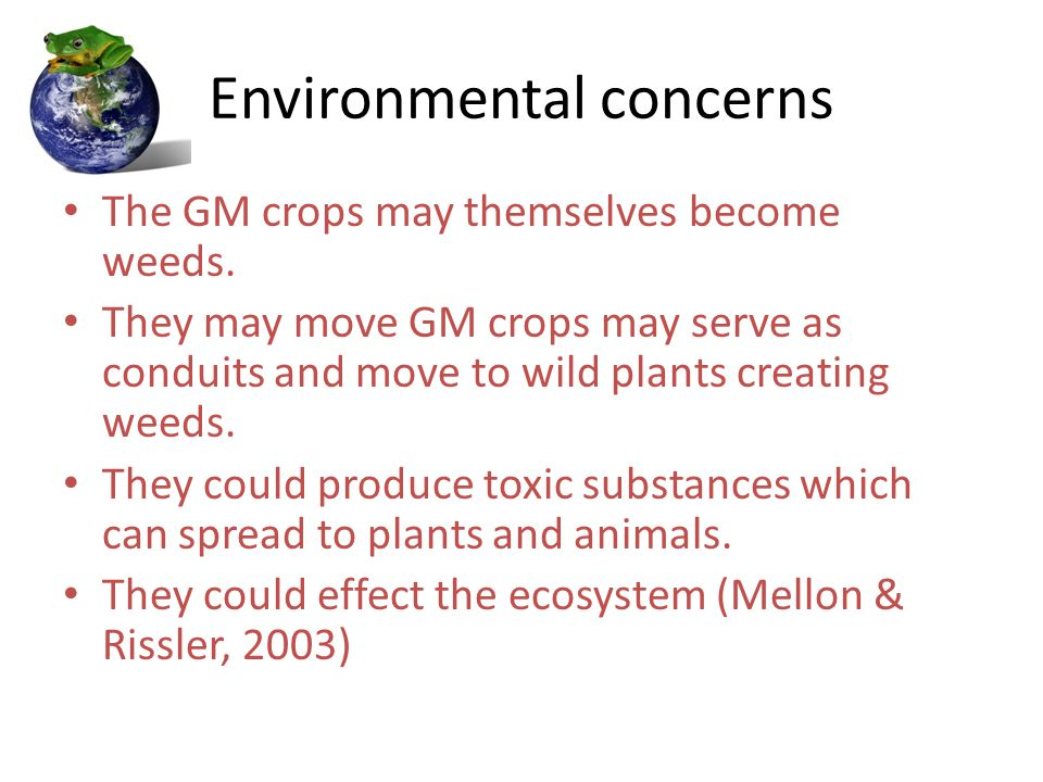 Environmental concerns The GM crops may themselves become weeds.